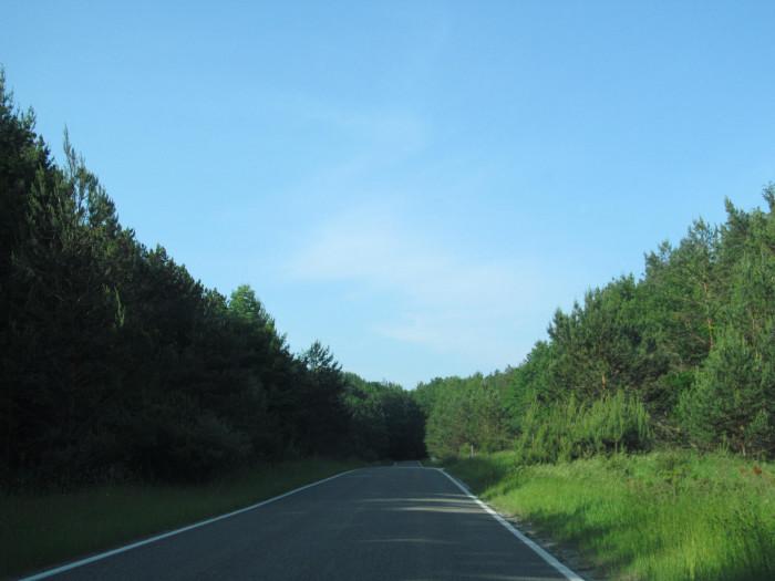 8) Michigan State Route 119