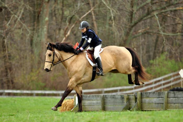 Middleburg horses