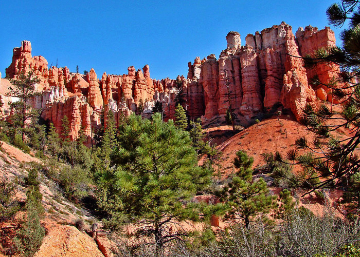 5) Mossy Cave Trail, Bryce Canyon National Park