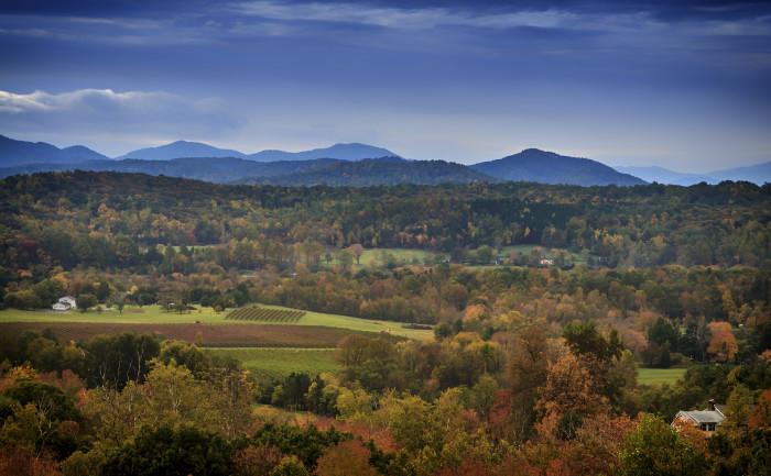 11.Mountain Farm, Greenwood