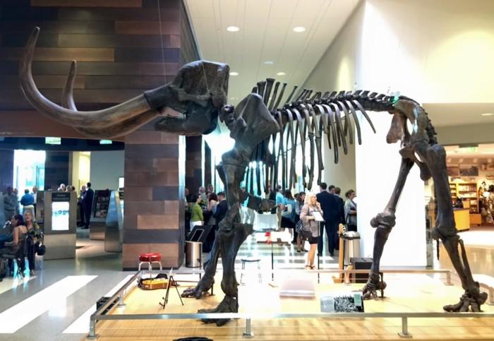 1. State Museum at the North Dakota Heritage Center - Bismarck, ND