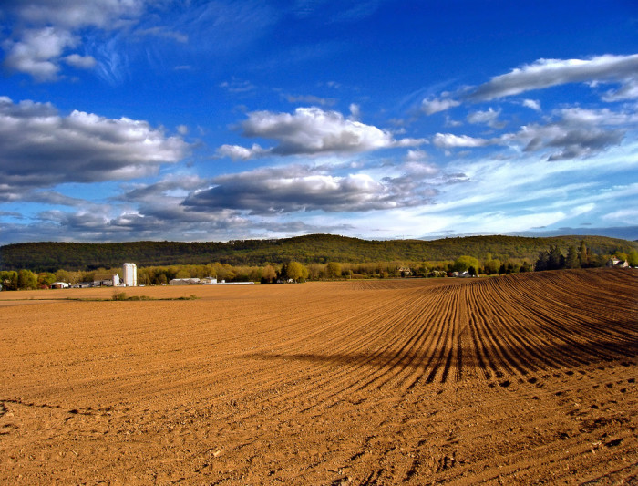 10. Plowed fields, Allamuchy