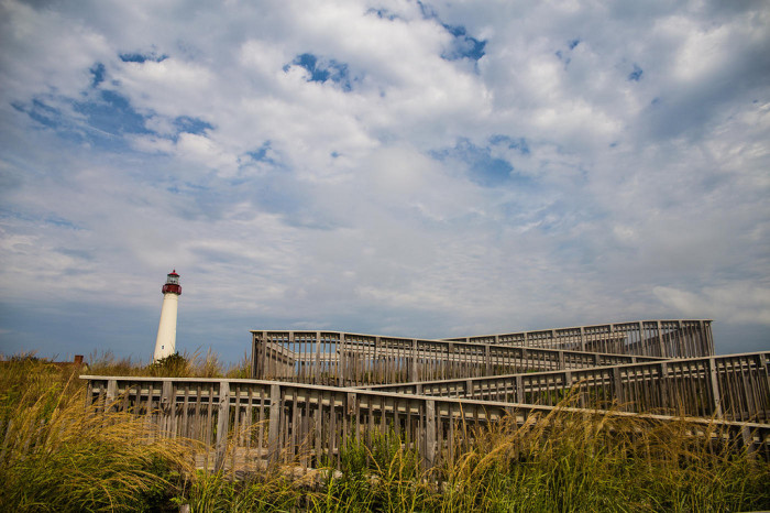 3. Cape May Point State Park, Cape May Point