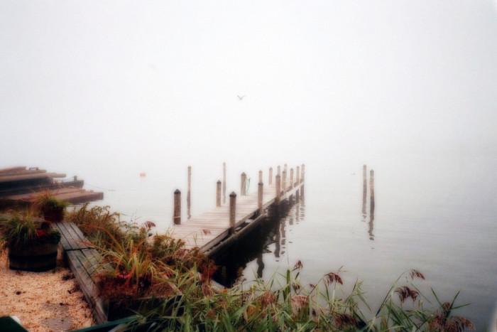 11. Docks, Bay Head