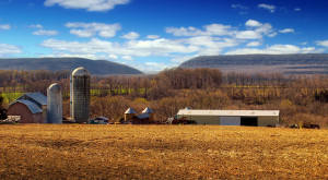 These 11 Charming Farms In New Jersey Will Make You Love The Country