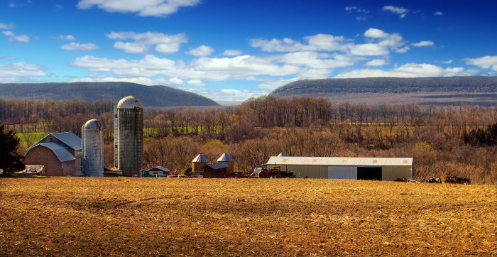 4. Farm on the Delaware, Knowlton