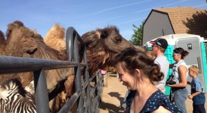 Here Are 8 Little Known Places In Nevada Where Animal Lovers Should Definitely Go