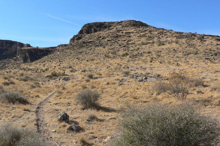 9. Blue Diamond Hill Fossil Trail