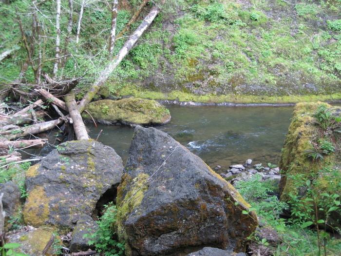 3) Nestucca River