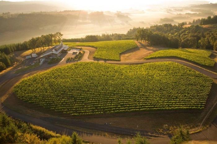 3) Penner-Ash Wine Cellars, Newberg