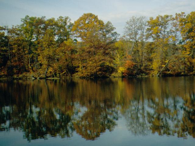 3. Lake Wilhelm in Maurice K. Goddard State Park