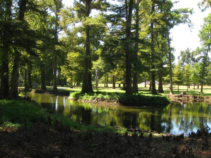 2) Reelfoot Lake