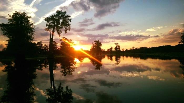 4) Saline Lake