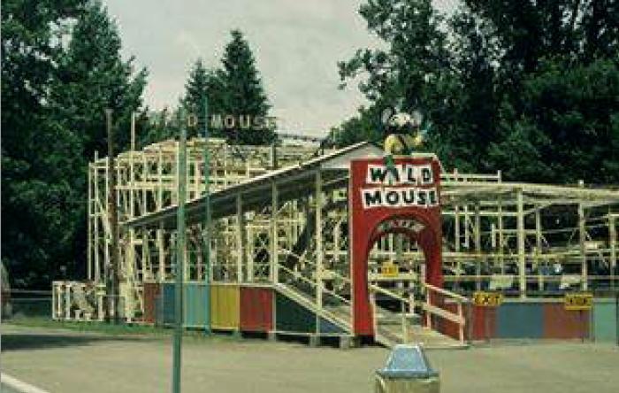 4. Wild Mouse Roller Coaster, Baton Rouge