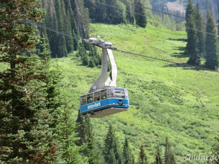 1) Ride the Tram at Snowbird