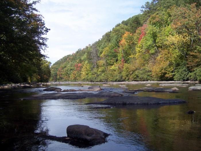 3) Tellico River - Monroe County