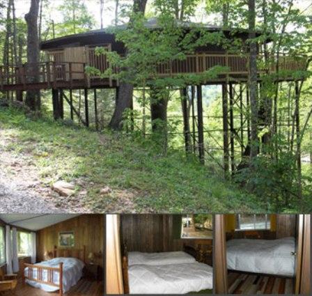 1. Treetop Roundhouse