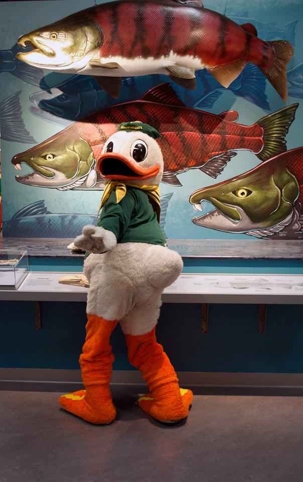 2) University of Oregon Museum of Natural and Cultural History