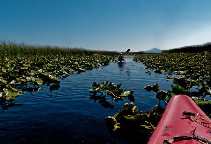 3) Upper Klamath Canoe Trail
