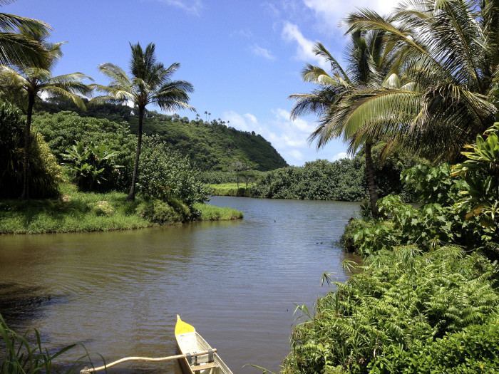 Stunning State Parks In Hawaii