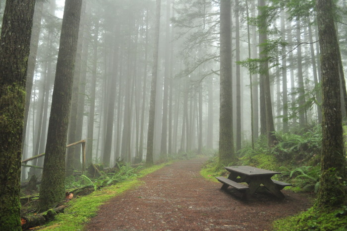 Tuesday: Wallace Falls State Park in Gold Bar