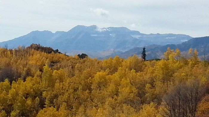 13) Hike and Camp at Wasatch Mountain State Park