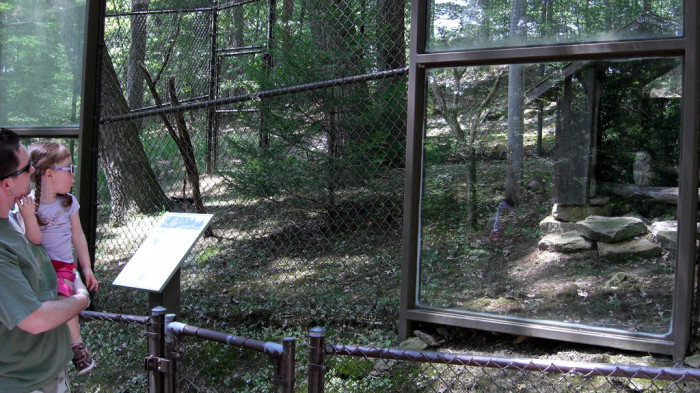 5. The West Virginia State Wildlife Center