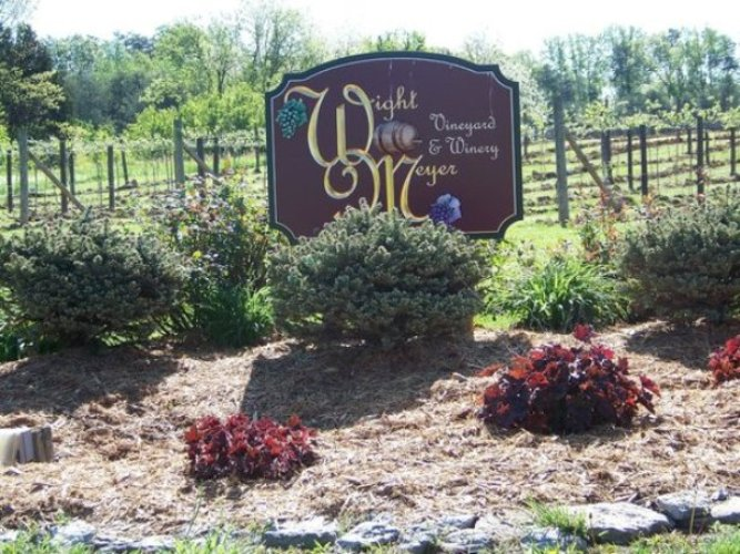 2. Visiting a Winery