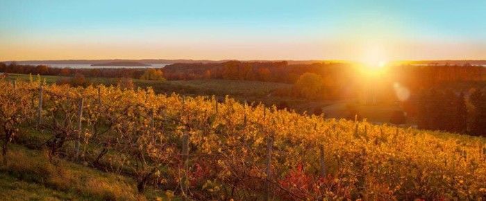 6) Wineries of Old Mission Peninsula