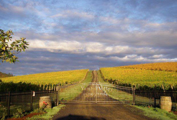 1) Yamhill Valley Vineyards, McMinnville