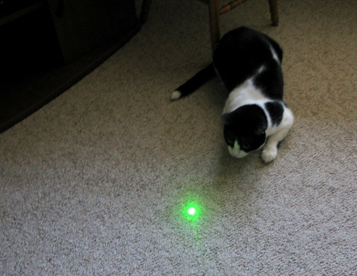 9) In Louisiana, you cannot shoot lasers at police officers.