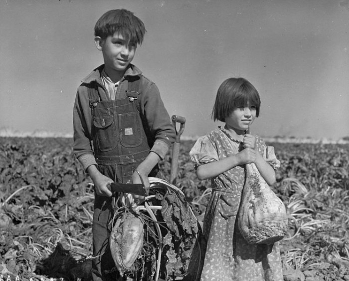 Kids Holding Sugar Beets on a Farm in Hall County, 1940