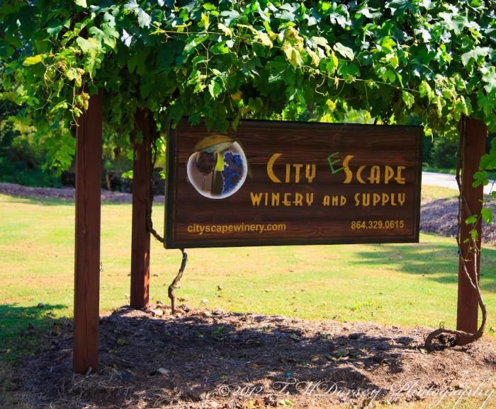 7. City Scape Winery, 589 Dunklin Bridge Rd, Pelzer