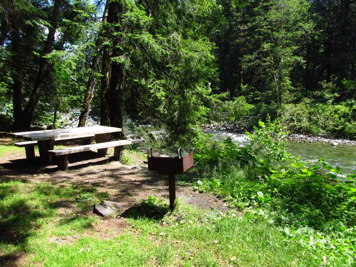 Friday: Dick Sperry Picnic Area, Mt. Baker-Snoqualmie National Forest