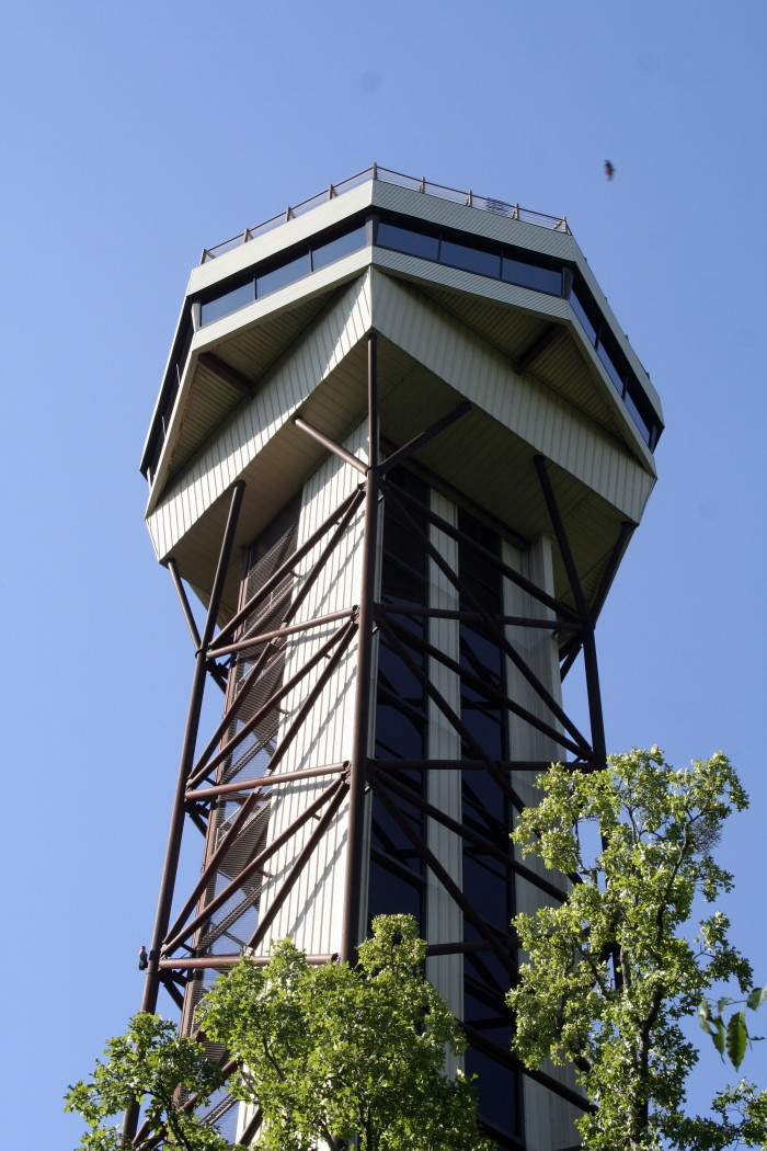 6. Hot Springs Mountain Tower