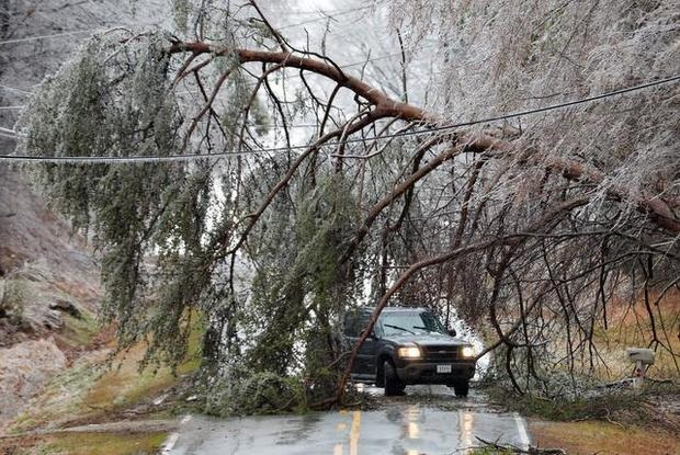 4. After the ice storm