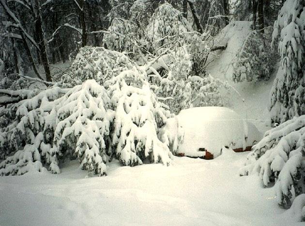 9. 1993 blizzard