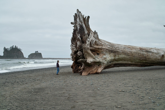 4. La Push has the western-most zip code in the continental United States, 98350.