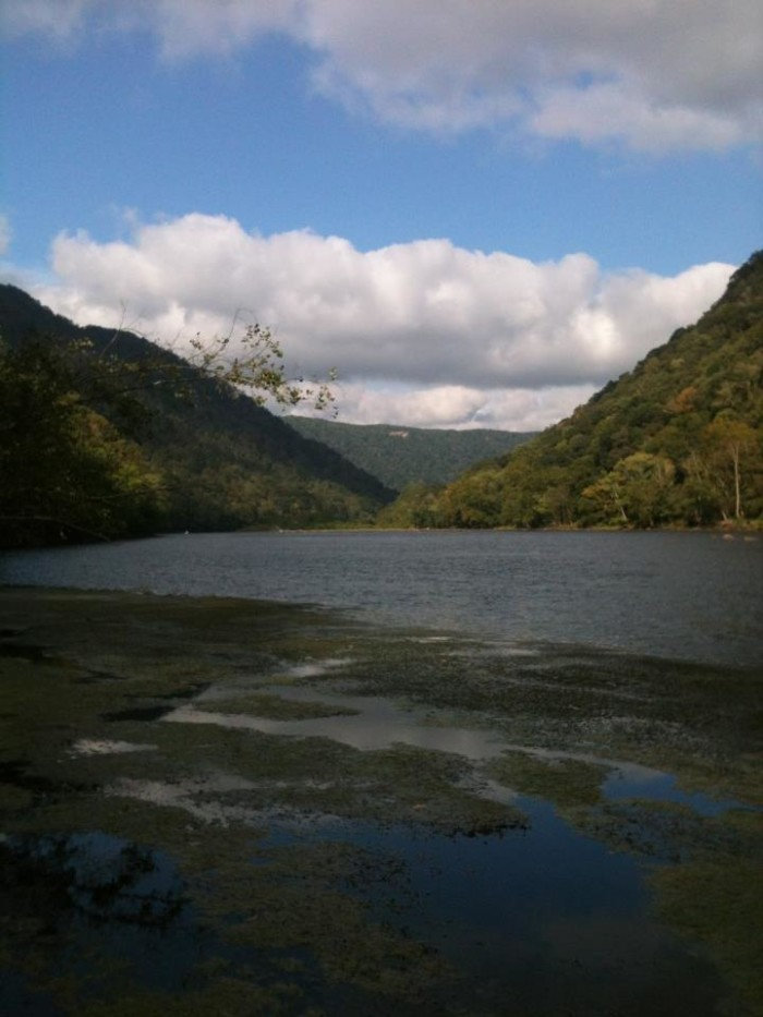 New River Gorge National Forest
