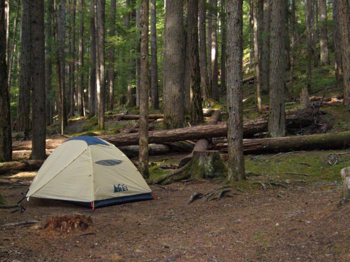 10. Ohanapecosh Campground
