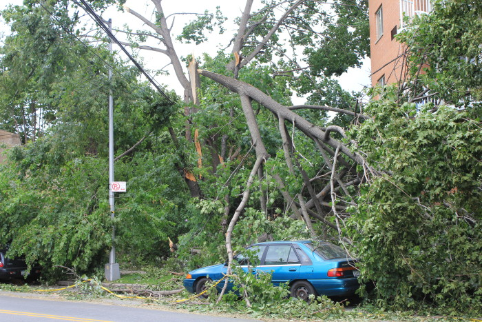 10. Insurance- When you live in a state with as many natural disasters as Oklahoma, you must have insurance on all your belongings.