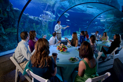 12 totally stunning wedding venues in nebraska junglespirit Gallery