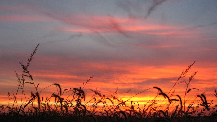 2. Sunset is wonderful. Fall is wonderful. Put them together--amazing!
