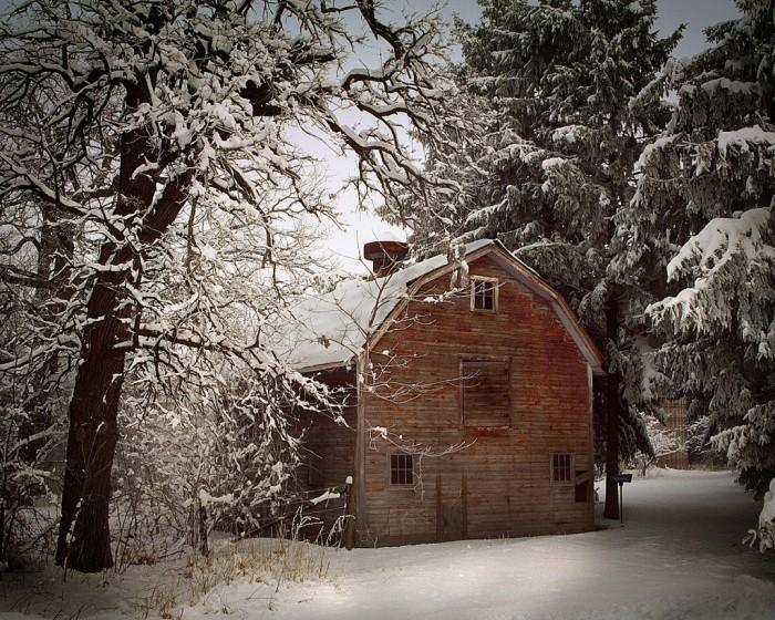 11. Winter isn't always pretty--but is sure looks wonderful here!