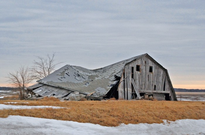 1. This barn has been flattened by the wind and soon will become one with the earth.