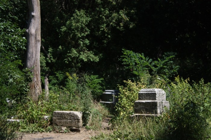 3. Bachelor's Grove Cemetery has been overtaken.