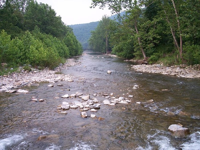 These 12 amazing spots in west virginia are perfect to go for Potomac river fishing spots