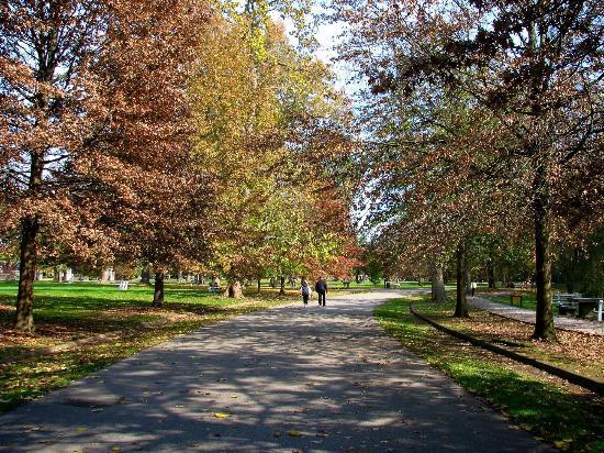 12.Ritter Park in Huntington