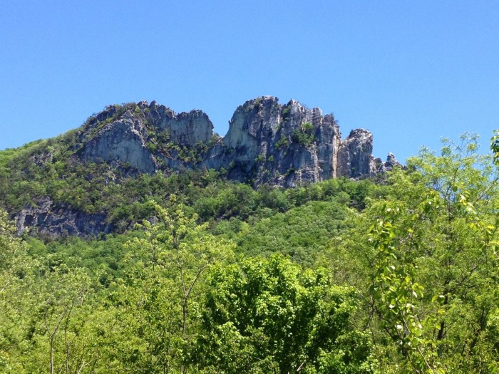 7. The area in front of Seneca Rocks
