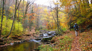 These 12 Amazing Camping Spots In West Virginia Are An Absolute Must See